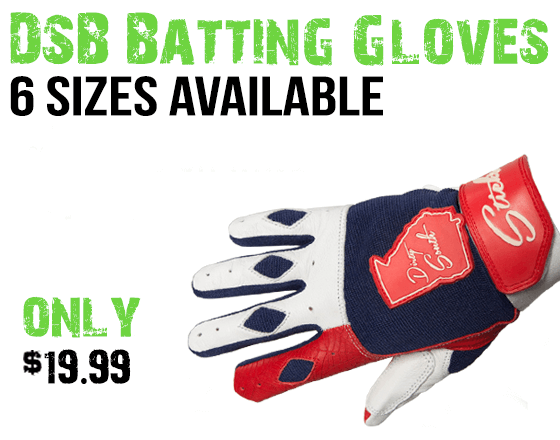 dsb baseball gloves